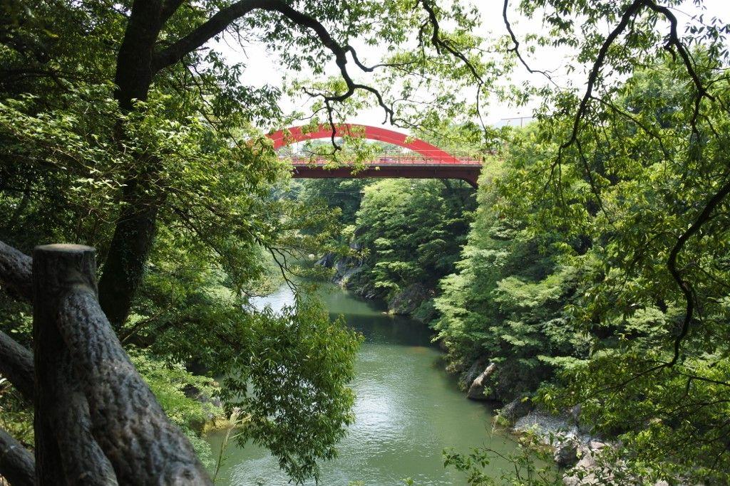 緑に映える深紅の橋に注目!