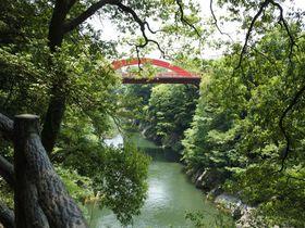 駅からぶらり渓谷散歩!群馬「高津戸峡」の深緑の魅力|群馬県|トラベルjp<たびねす>