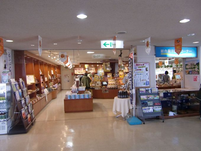 1階は観光案内所に土産販売コーナー、更に水族館も!