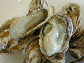 1年中牡蠣がおいしい!北海道厚岸町・道の駅「コンキリエ」|北海道|トラベルjp<たびねす>