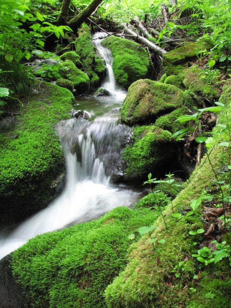 滝に至るまでの渓流も美しい