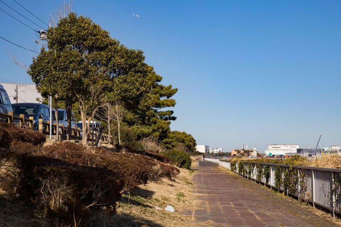 ベンチでのんびり!「京浜島つばさ公園」