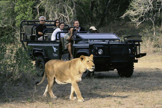 多彩な魅力いっぱいの「南アフリカ」観光の見どころを総まとめ!