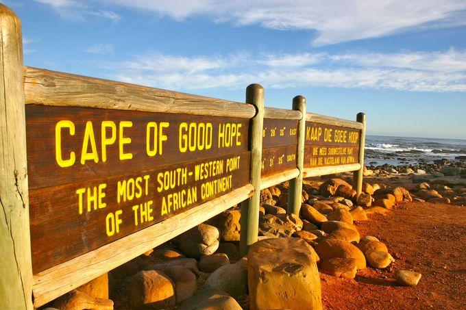 足を延ばしてケープ半島へ!喜望峰&ボルダーズビーチ