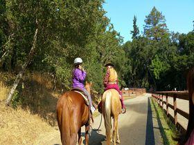 サンフランシスコ郊外で体験したい、乗馬にカヤック、クラフトビール!