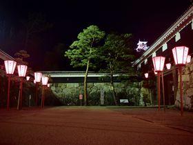 見よ、闇夜に浮かぶ姿を!夜の高知城が美しい……|高知県|トラベルjp<たびねす>