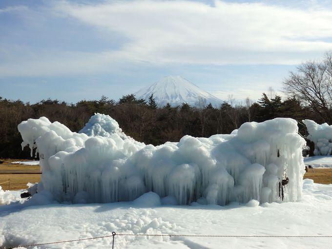 樹氷だけじゃない!山梨県「西湖樹氷まつり」3つの楽しみ方