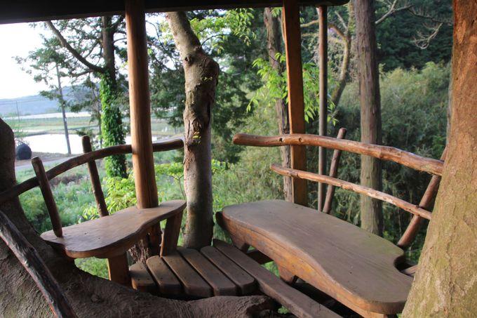 宿泊できるツリーハウス、気になる部屋の設備は……?