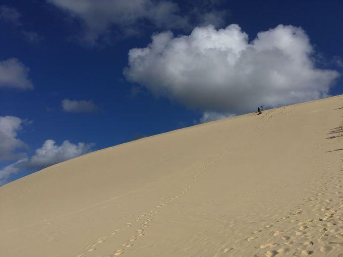 一番人気の「砂すべり」は迫力満点!気分爽快!