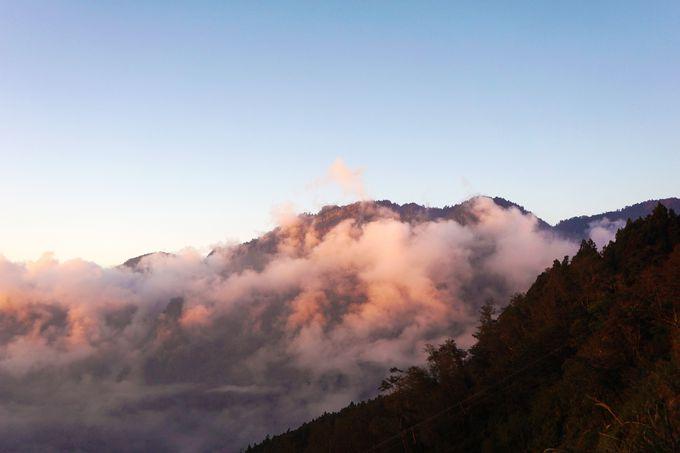 幻想的な雲海が疲れ切った心をやさしく癒やす