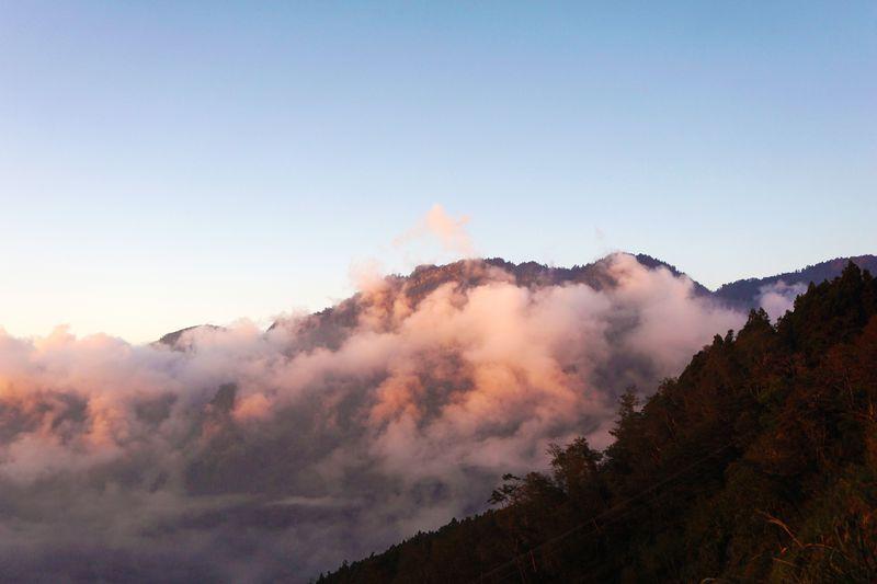 お疲れ女子の心を癒やす!台湾・阿里山のパワースポットを巡る旅