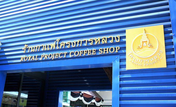 ドイ・カム製品が手軽に買える場所とお勧めの店舗