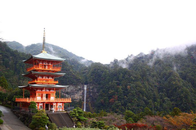 寺と神社が隣り合わせ!秀吉が愛した青岸渡寺