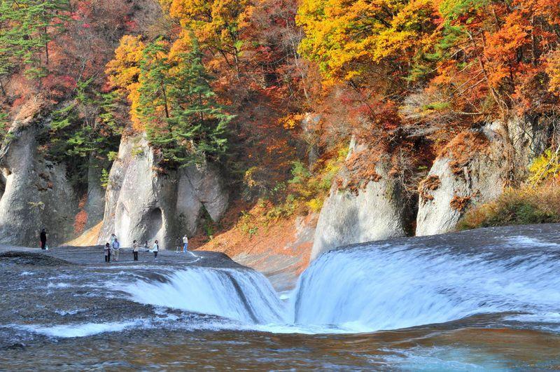 関東3大瀑布の紅葉あなたはどこに行きますか?茨城県・袋田の滝or群馬県・吹割の滝or栃木県・華厳の滝