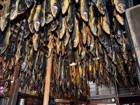 天井から下がる無数の鮭が圧巻!新潟県村上はグルメも充実!!|新潟県|トラベルjp<たびねす>