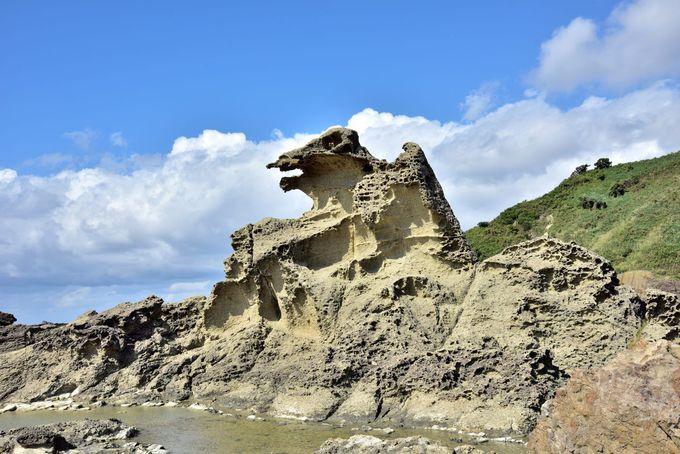 テレビコマーシャルで話題になった「ゴジラ岩」