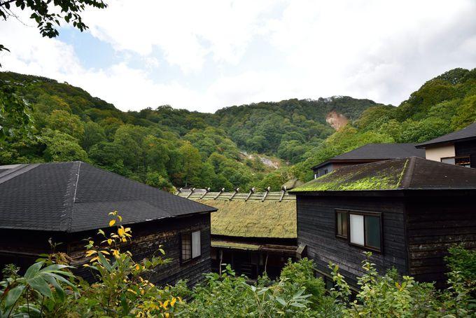 丘の上から黒湯温泉を見下ろす
