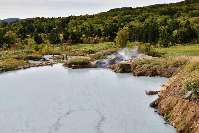 後生掛自然研究路最大のみどころ「大湯沼」