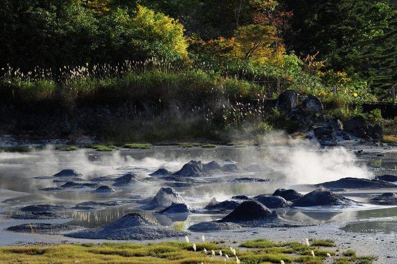 大自然の息吹を感じる迫力の地熱地帯・秋田県「後生掛自然研究路」