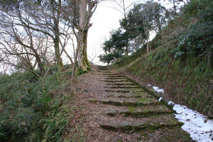 昼間も桜咲く鹿野城や城下町の散策がお勧め