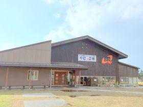 一年中、何度行っても楽しめる水族館・鳥取「かにっこ館」なんと入場無料!|鳥取県|トラベルjp<たびねす>