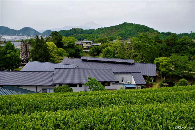 """茶畑越しの富士山も""""反射炉ビヤ""""のおつまみに"""