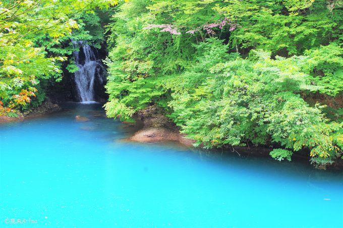 ティファニーブルーに注ぐ「桃太郎の滝」