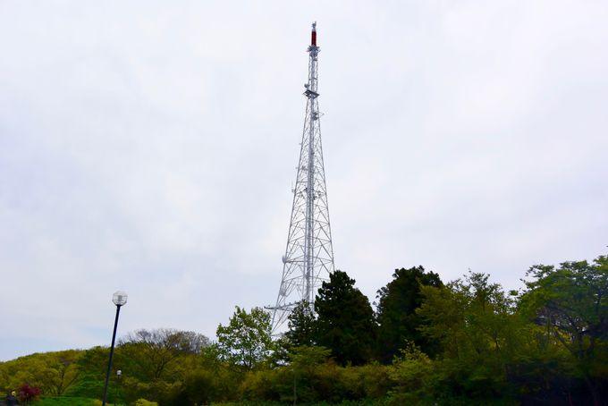 3、大年寺山のテレビ塔(ミヤテレタワー)