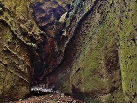 川床を歩く鍾乳洞と喫茶店を擁す海食洞穴 高知「伊尾木洞」と「千鳥洞」|高知県|トラベルjp<たびねす>