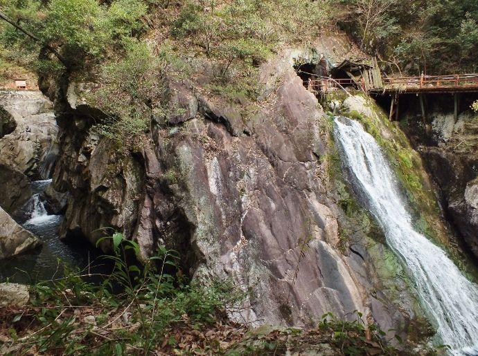 桜と奇勝の渓谷を同時に堪能!松山市「湧ヶ淵」