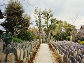 奈良市屈指の美しい仏像と随一の神聖地~奈良町と御蓋山界隈~|奈良県|トラベルjp<たびねす>