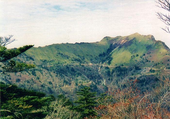 シャクナゲとアケボノツツジの無名峰