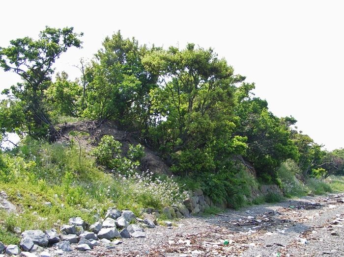 徳島藩の二つの砲台跡