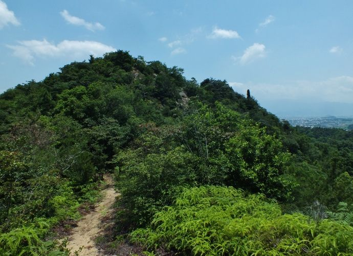 展望所だらけの永納山稜線
