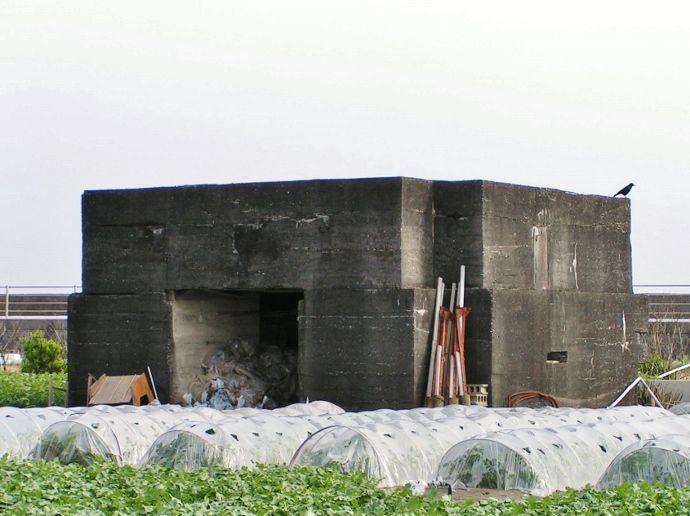 県最大の現存トーチカ