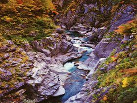 """断崖と滝と紅葉""日本最大の渓谷・富山「黒部峡谷下ノ廊下」"