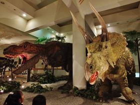 恐竜のうんちと座席が宙を飛ぶアニメも!?〜愛媛県総合科学博物館〜