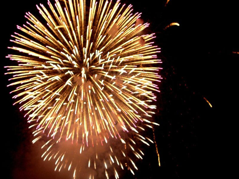 パノラマで豪華絢爛さを堪能できる大阪最大の花火エンターテイメント!なにわ淀川花火大会