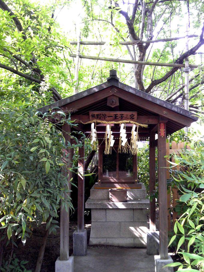 堀越神社は熊野詣の出発点でもあるパワースポット!