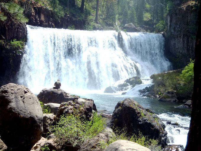 シャスタ山源流の3つの滝を楽しめる、マクラウドフォールズへ!