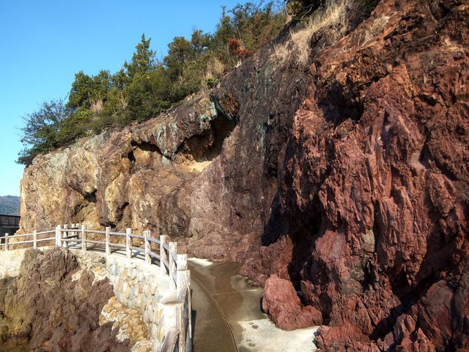 一億数千年前の自然が残る神秘のパワースポット「仙酔島」