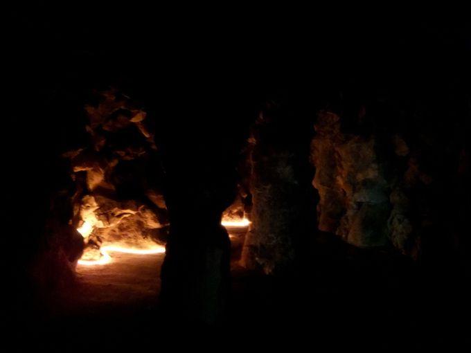 暗闇の中、どこに通じているのかちょっとドキドキ…