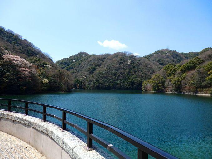 ダム湖百選でもある、布引ダム沿いを進む