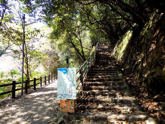 徒歩15分で気軽に行ける、日本三大神滝・布引の滝