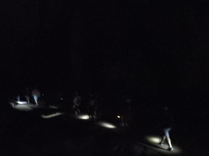 ガイドの珍しい生き物や鍾乳洞の話と共に、暗闇を進む!
