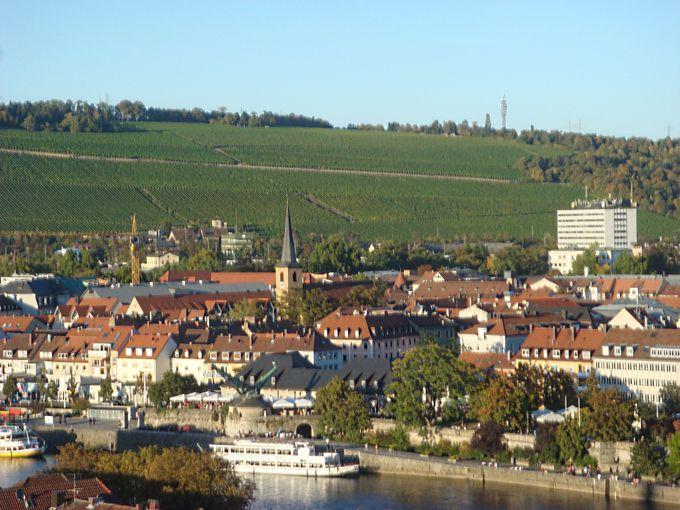 ヴュルツブルクではビールではなく、フランケンワインで乾杯