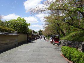 ねねの道ぶらり散策ガイド!美しい石畳の道は京都東山随一の人気スポット|京都府|トラベルjp<たびねす>