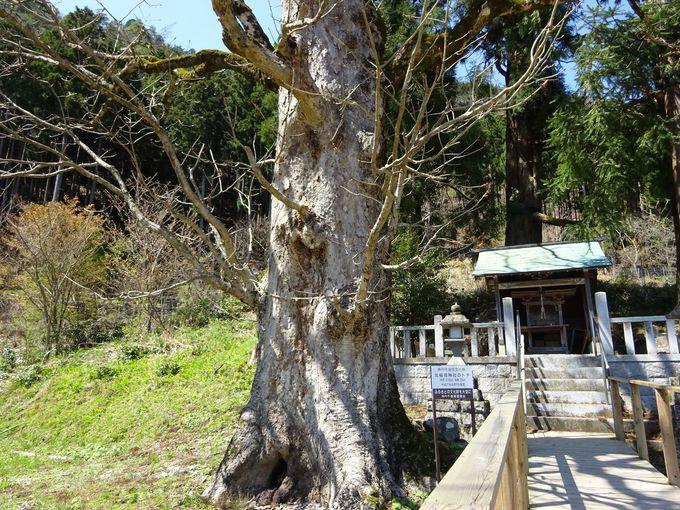 北稲荷神社