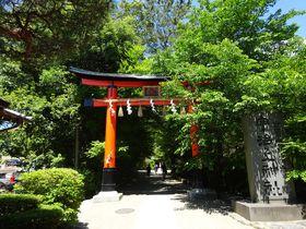 現存する最古の神社建築!「宇治上神社」は京都が誇る世界遺産|京都府|トラベルjp<たびねす>