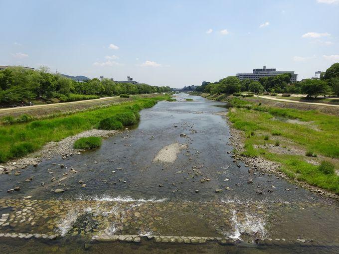 鴨川沿いは散策コースとして人気
